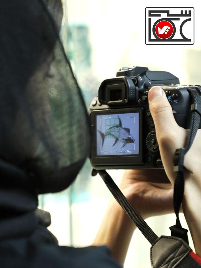 akkasi site akkasi chist 5 - عکاسی چیست ؟