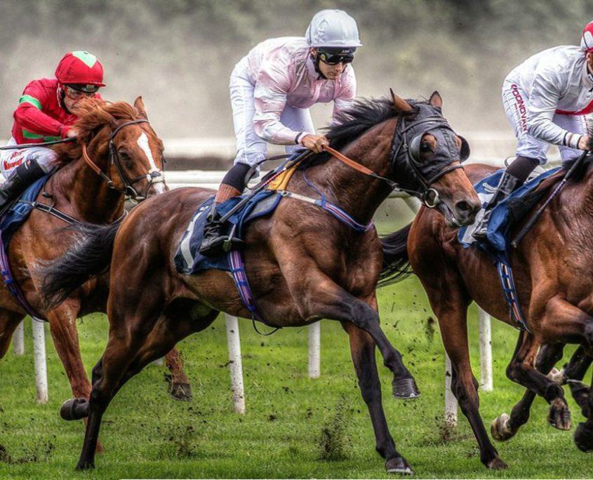 Sport photography horse 845x684 - 10 نکته در رشته عکاسی ورزشی