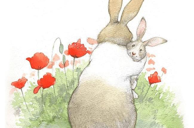 تصویرسازی کتاب داستان کودک