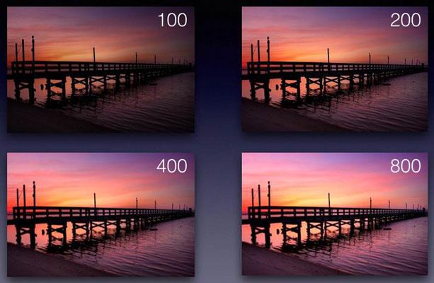 iso photography - 10 نکته برای افراد مبتدی در رشته عکاسی ورزشی