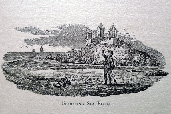 Thomas  Bewick - تاریخچه تصویرسازی