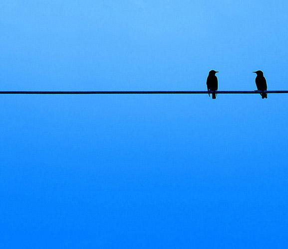 minimalist photography - اصول کادربندی در عکاسی