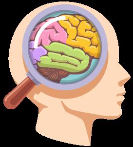 mind vector - آیا هنر و صنایع دستی اعتماد به نفس کودکان را افزایش میدهد؟