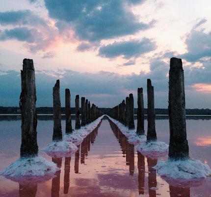 Symmetry - عکاسی با موبایل