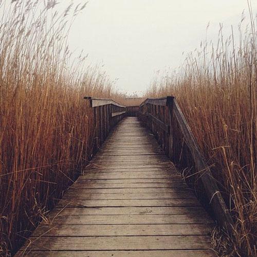 leadingline - عکاسی با موبایل