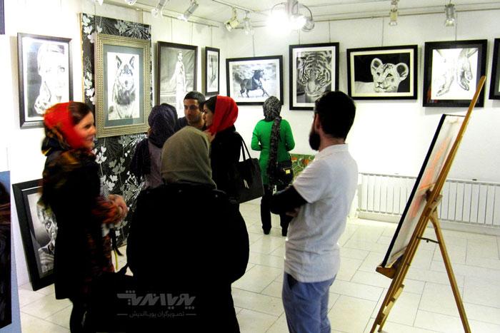 عکس نمایشگاه نقاشی سیاه قلم