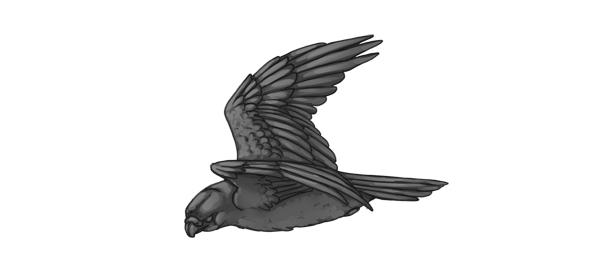 practice painting 7 grayscale 4 - 7 تمرین لازم برای بهبود مهارت های نقاشی دیجیتال