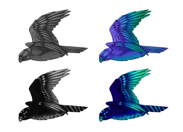 practice painting 7 grayscale 9 - 7 تمرین لازم برای بهبود مهارت های نقاشی دیجیتال