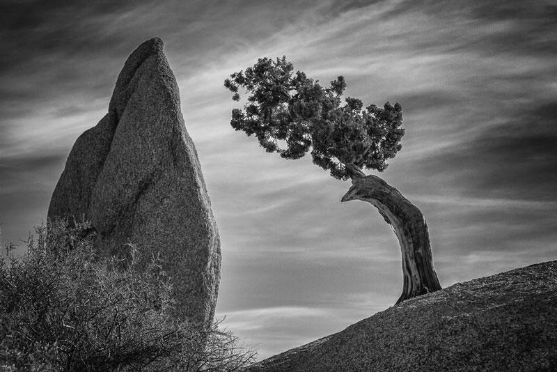 Balance photography 8 - تعادل در عکس