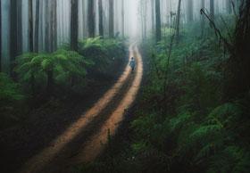 akasi tabiat15 - نحوه ی عکاسی از طبیعت