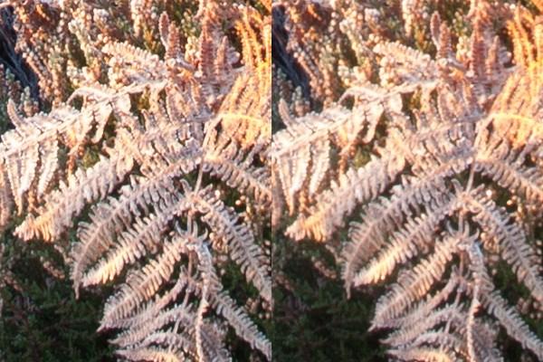 foreground zoom - عکاسی واضح و شارپ از منظره : فاصله ی ابر کانونی و انتخاب گشودگی دیافراگم