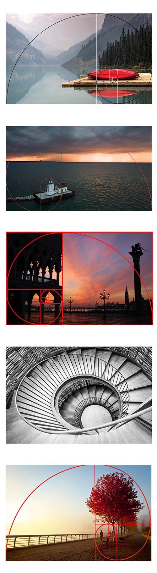 golden spiral photo - نسبت طلایی در عکاسی