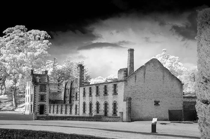 leannecole infrared photography - نکاتی در خصوص تغییر یک دوربین قدیمی وعکاسی مادون قرمز
