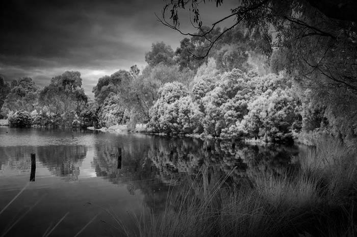winter photography - نکاتی در خصوص تغییر یک دوربین قدیمی وعکاسی مادون قرمز