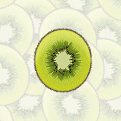 4 kiwi final - 10 نکته و ابزار ضروری برای کسانی که کار با Adobe Illustrator را شروع کرده اند