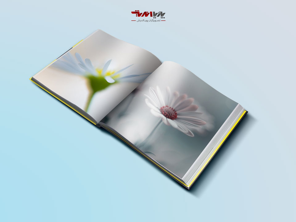 What is abstract flower photography - راهنمای تازه کاران در عکاسی انتزاعی گل ها
