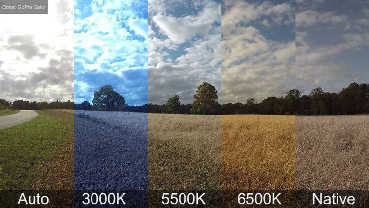 White Balance - چگونهتعادل رنگ در عکاسی می تواند رنگ تان را از بین ببرد ؟
