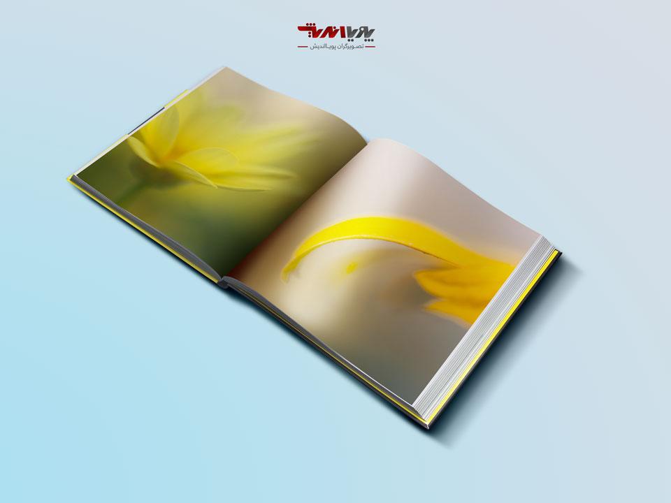 how to photograph of flowers abstract - راهنمای تازه کاران در عکاسی انتزاعی گل ها
