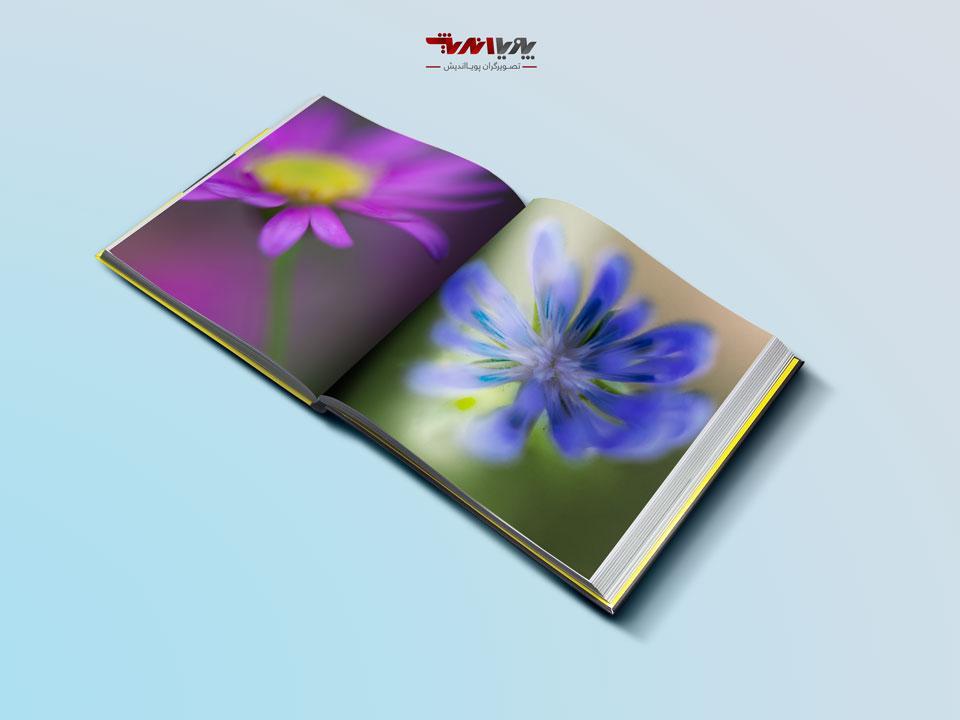 lenses - راهنمای تازه کاران در عکاسی انتزاعی گل ها