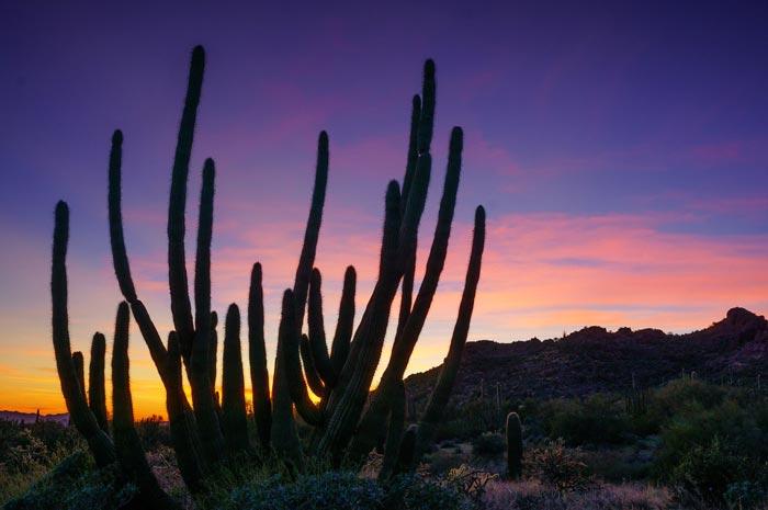 sunset photography - راهنمای مبتدیان برای استفاده از نور طبیعی در عکاسی منظره