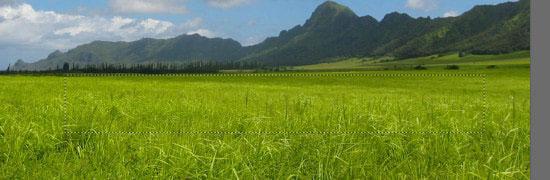 pouyaandish photoshop dainasor4 - ساخت نقاشی دیجیتالی در فوتوشاپ : « انقراض دایناسورها»