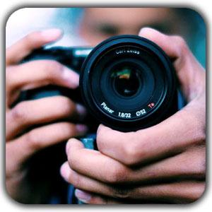 photography instagram - عناصر ارگانیک در طراحی دکوراسیون