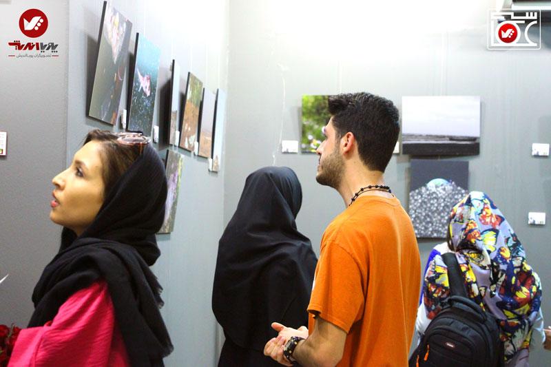 namayeshgah axasi honarjouyan pouyaandish zamin dar yek ghab 14 - نمایشگاه عکاسی زمین در یک قاب