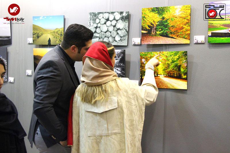 namayeshgah axasi honarjouyan pouyaandish zamin dar yek ghab 1 earth frame photography 19 - آموزش آنلاین و مجازی عکاسی
