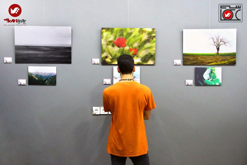 namayeshgah axasi honarjouyan pouyaandish zamin dar yek ghab 7 - نمایشگاه عکاسی زمین در یک قاب