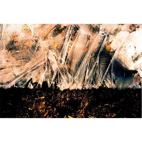gallery news ahmad pourheidari aban 98 - گالری های هنری آبان ماه 98