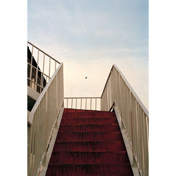 gallery news leila sabir aban 98 - گالری های هنری آبان ماه 98