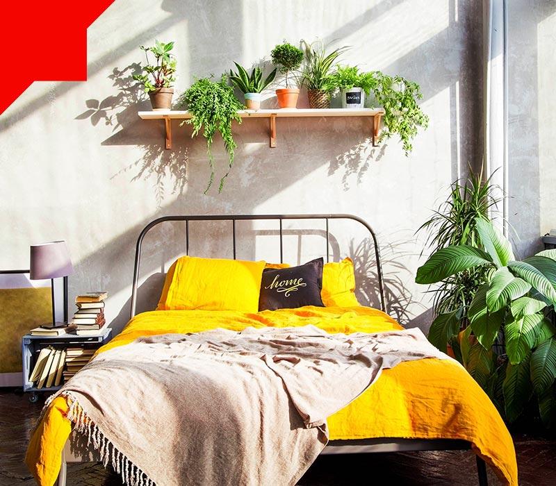 فضای سبز اتاق خواب کوچک