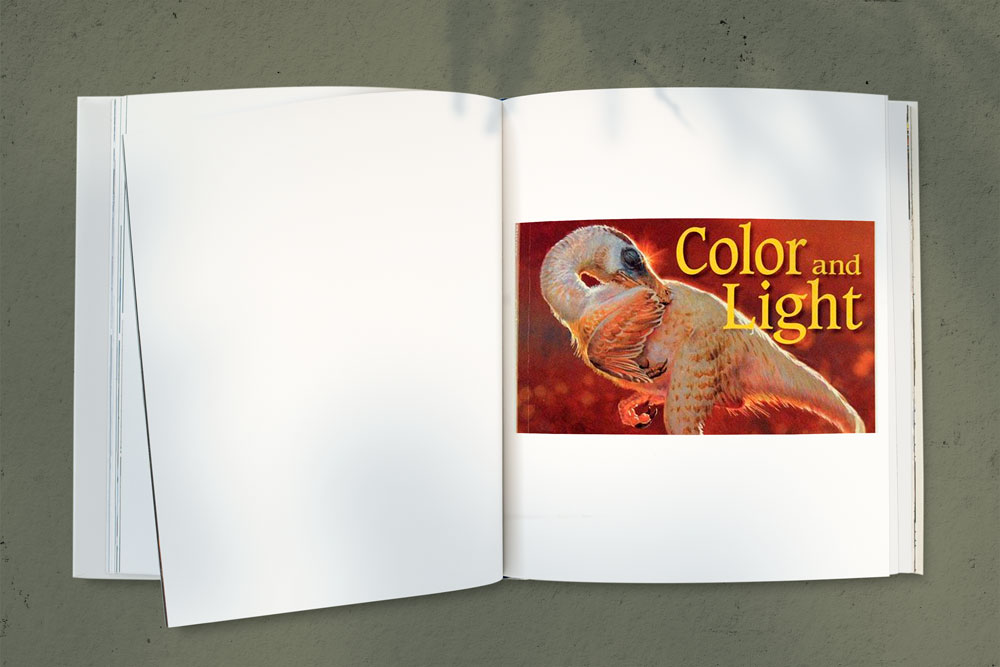 10 illustration books 5 - کتاب آموزش تصویرسازی