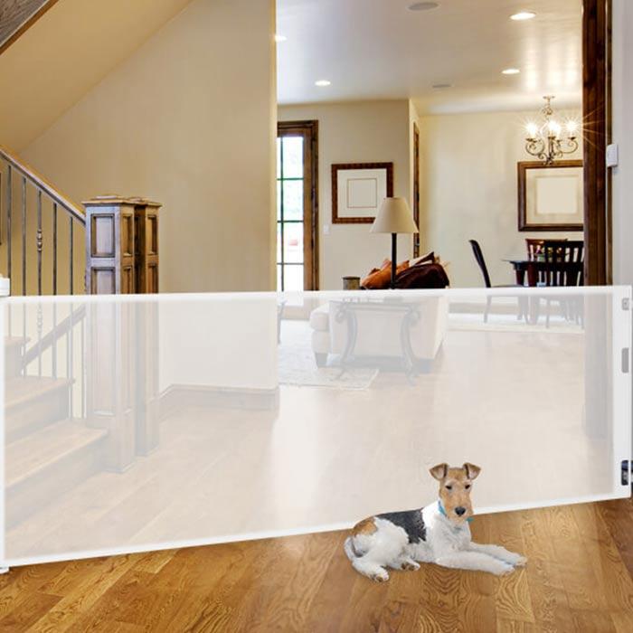 interior design suitable for pets 11 - طراحی دکوراسیون داخلی برای آنها که حیوانات خانگی دارند