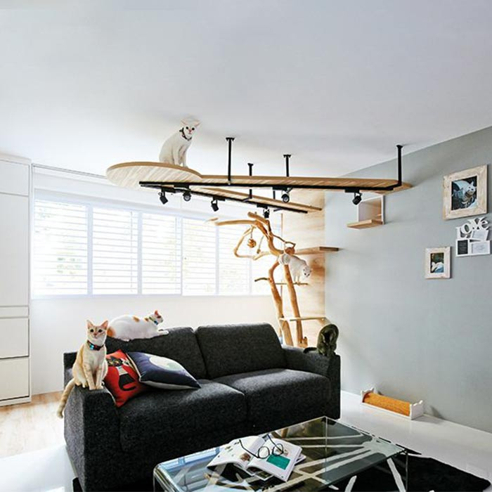 interior design suitable for pets 13 - طراحی دکوراسیون داخلی برای آنها که حیوانات خانگی دارند