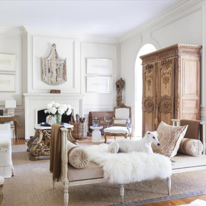 interior design suitable for pets 2 - طراحی دکوراسیون داخلی برای آنها که حیوانات خانگی دارند