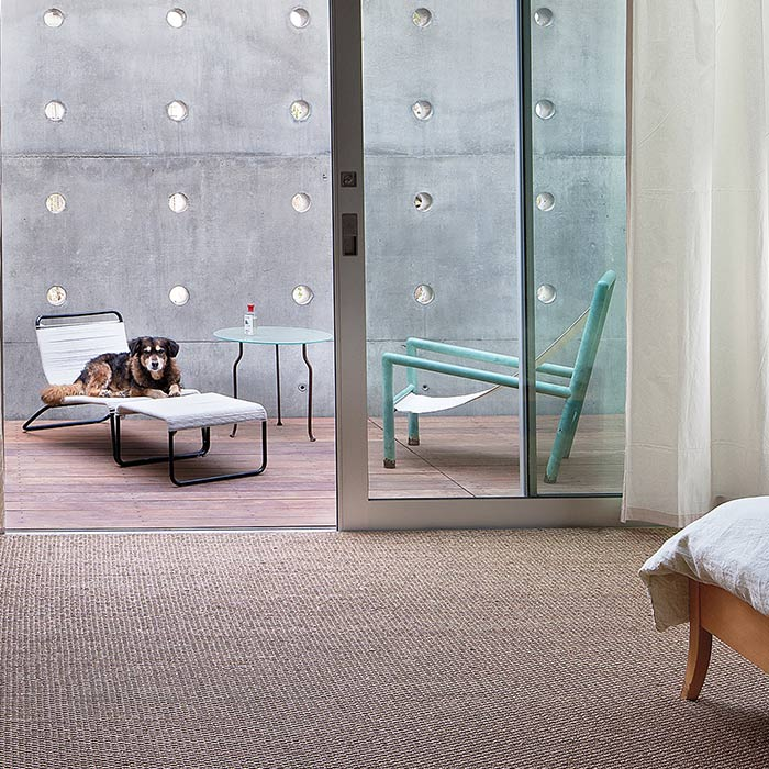 interior design suitable for pets 3 - طراحی دکوراسیون داخلی برای آنها که حیوانات خانگی دارند