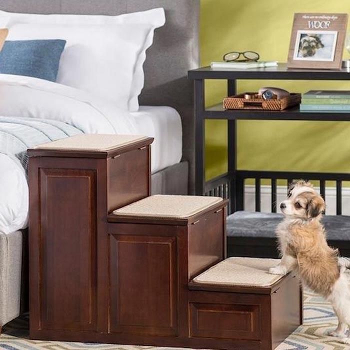 interior design suitable for pets 7 - طراحی دکوراسیون داخلی برای آنها که حیوانات خانگی دارند