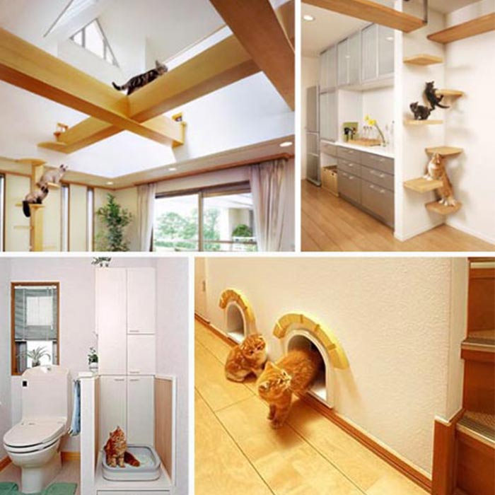 interior design suitable for pets 8 - طراحی دکوراسیون داخلی برای آنها که حیوانات خانگی دارند