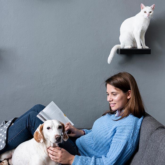 interior design suitable for pets 9 - طراحی دکوراسیون داخلی برای آنها که حیوانات خانگی دارند