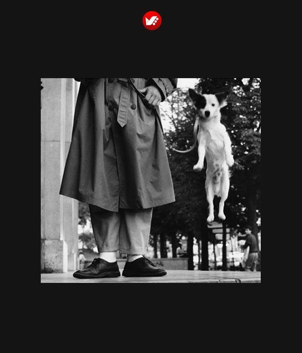 street photography 13 - معرفی عکاسان خیابانی
