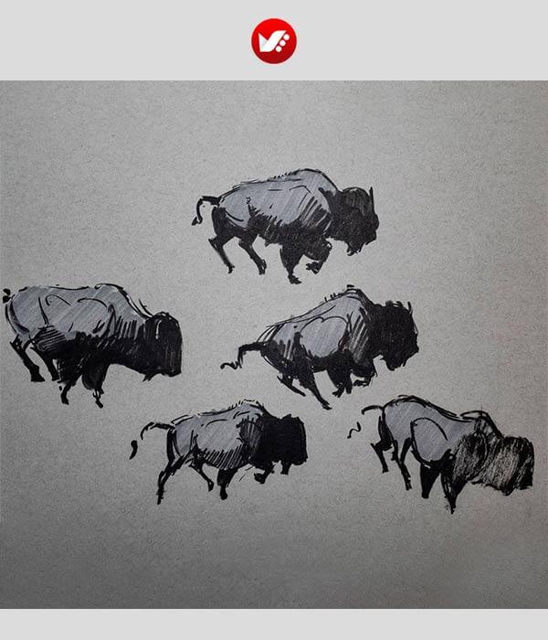 15 نکته طلایی برای نقاشی حیوانات