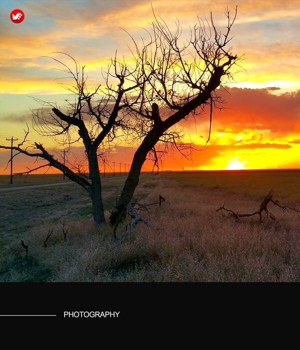 photography and psychology 13 - عکاسی و روانشناسی