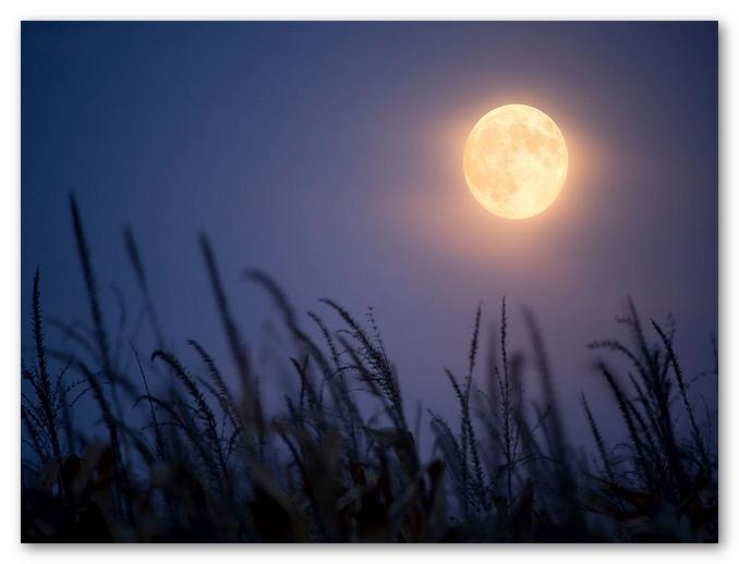 چگونه می توان از ماه عکس گرفت؟
