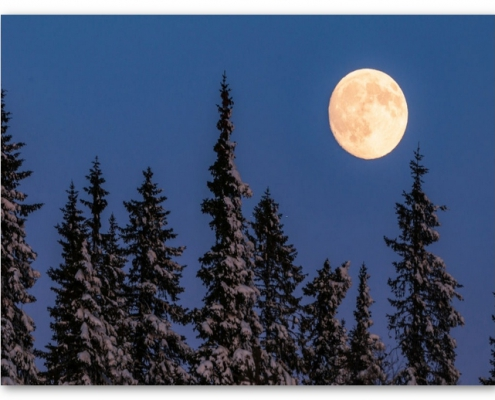 ماه در آسمان