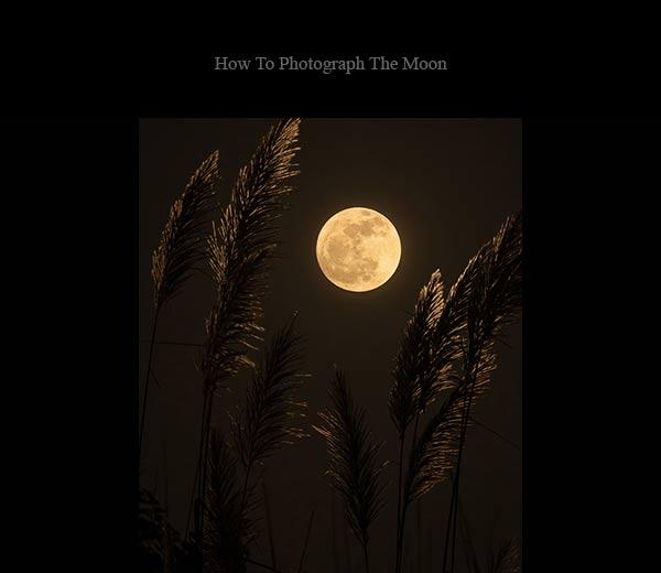 ترکیب ماه با پیش زمینه عکس