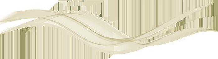 rhinogold shadow - راینو گلد ، rhinogold